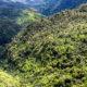 Black River Gorges National Parks